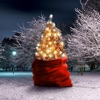 The Best Nightmare For Xmas - Single ジャケット写真