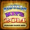 Biggest Hits 2014 - Punjabi Dance Hits