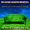 Adventure in the Land of Lounge (The Stevie Wonder Dreams)