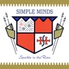Sparkle In the Rain, Simple Minds