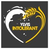 Ylvis - Intolerant artwork