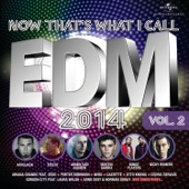 Now That's What I Call EDM 2014, Vol. 2