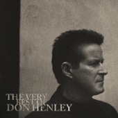Don Henley - The Boys of Summer kunstwerk