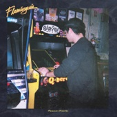 Flamingosis - Live in Concert