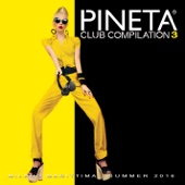 Pineta Club Compilation, Vol. 3