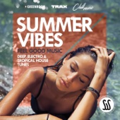 Download Summer Vibes (Feel Good Music: Deep, Electro & Tropical House Tunes) - Various Artists on iTunes (Electronic)