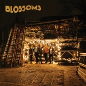 Blossoms - Charlemagne artwork