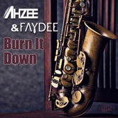 Burn It Down - EP