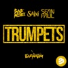 Sak Noel & Salvi ft. Sea... - Trumpets