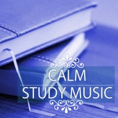 Calm Study Music - Top 50 Songs for Concentration, Deep Brain Stimulation and Exam Preparation