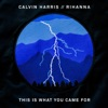 This Is What You Came For (feat. Rihanna) - Single, Calvin Harris