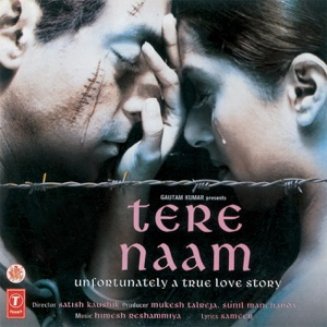 UDIT NARAYAN - Tere Naam Chords and Lyrics | ChordZone org