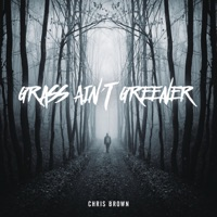 Grass Ain't Greener - Single - Chris Brown