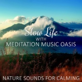Healing Sounds for Pure Soul