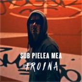 [Download] Sub Pielea Mea (Midi Culture Remix) MP3