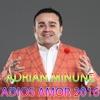 Adios Amor, Adrian Minune