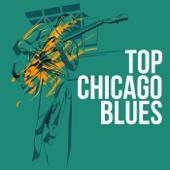 Top Chicago Blues