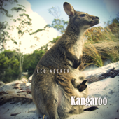 Kangaroo (Radio Edit)