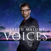Voices (Deluxe Version)