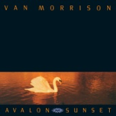Van Morrison - These Are the Days artwork