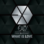 What Is Love (Korean Version)