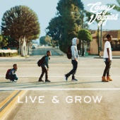 Casey Veggies - Live & Grow  artwork