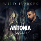 Wild Horses (feat. Jay Sean) [Remixes] - EP