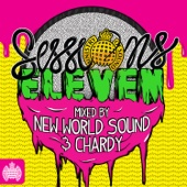 Ministry of Sound Sessions Eleven (Mixed By New World Sound & Chardy)