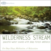 Wilderness Stream: Peaceful Water Sounds With Deep Forest Ambiance Nature Sounds for Deep Sleep, Meditation, & Relaxation - Robbins Island Music Group