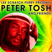 Brand New Second Hand - Peter Tosh