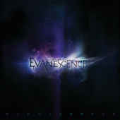 Evanescence - What You Want artwork