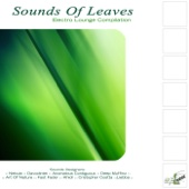 Sounds Of Leaves - Electro Lounge Compilation