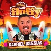 Aloha Fluffy - Gabriel Iglesias Cover Art