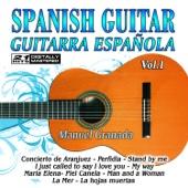 Spanish Guitar, Guitarra Española 1