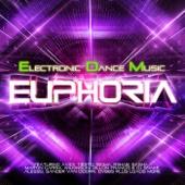 EDM Euphoria 2014