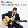 Money (That's What I Want) (From Jim Beam's Live Music Series) - Single, David Gray