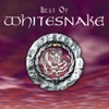 Best of Whitesnake, Whitesnake