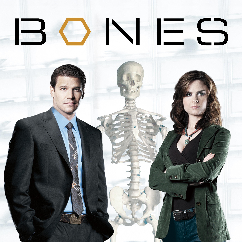 Bones Staffel 10 Kaufen
