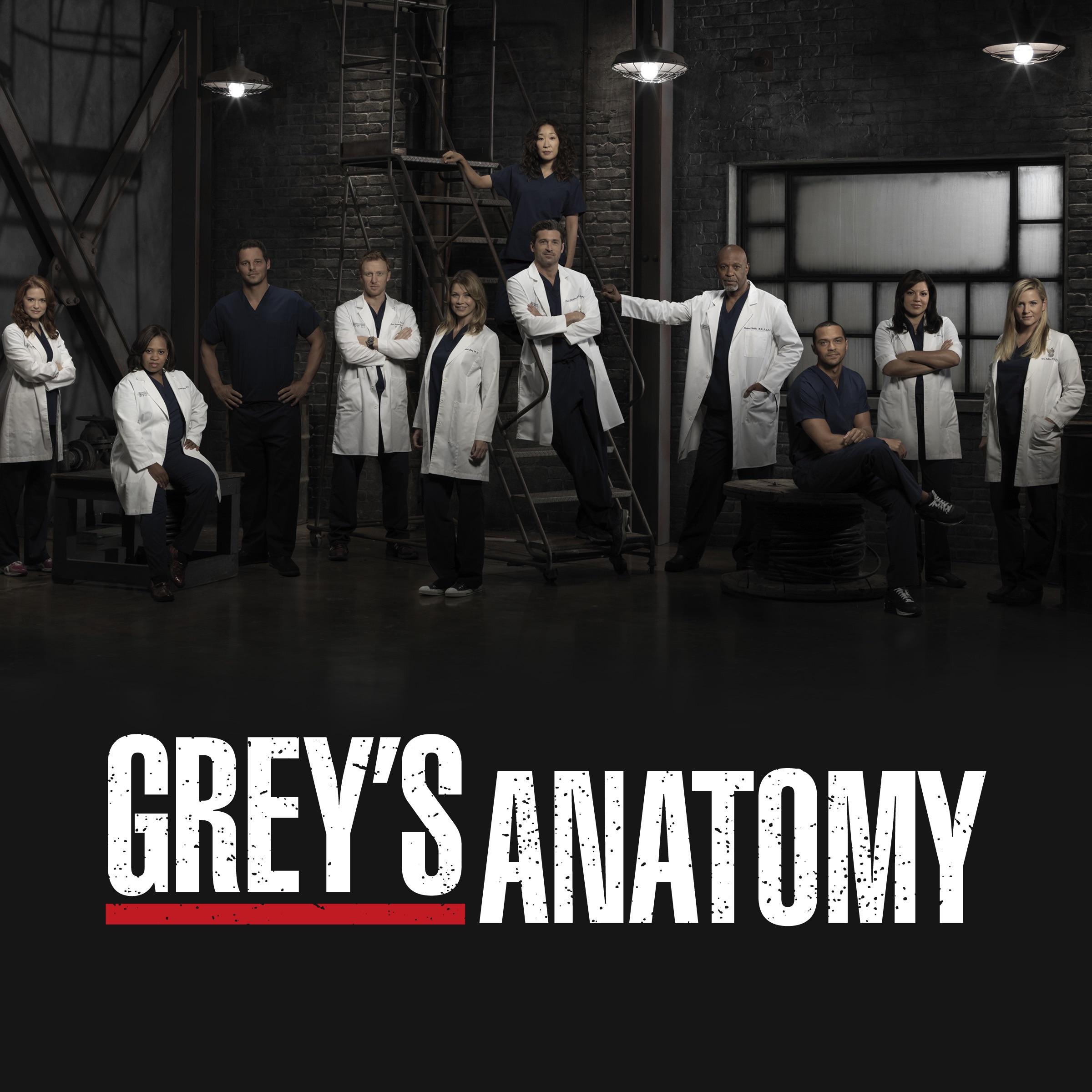 Grey anatomy season 10 episode 1 music - Kirby puckett world series ...