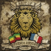 Best of French Reggae