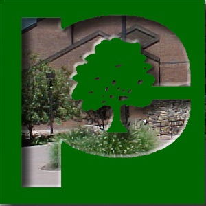 Parkland College: Outside The Box