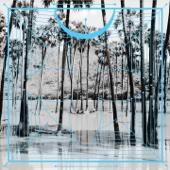 Jupiters / Lion (Remix) - Single cover art
