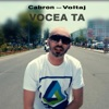 Vocea Ta (feat. Voltaj) - Single, Cabron