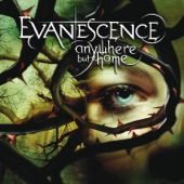 Anywhere But Home (Live From Le Zénith, France/2004)