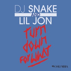 SNAKE, Dj - Turn Down For What