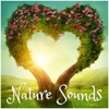 Love Nature Sounds
