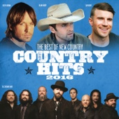 Various Artists - Country Hits 2016 artwork