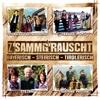 Z'sammg'rauscht / bayerisch - steirisch - tirolerisch