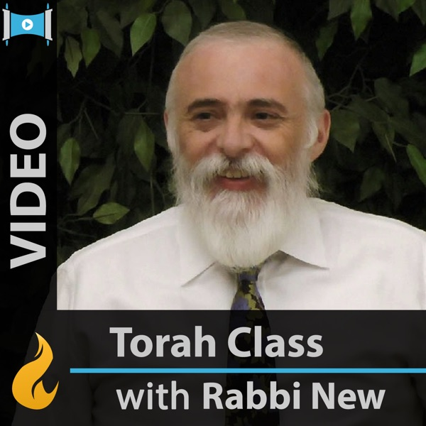 Commentaries on the Torah (Video)