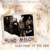 Screamin' at the Sun, Blind Melon